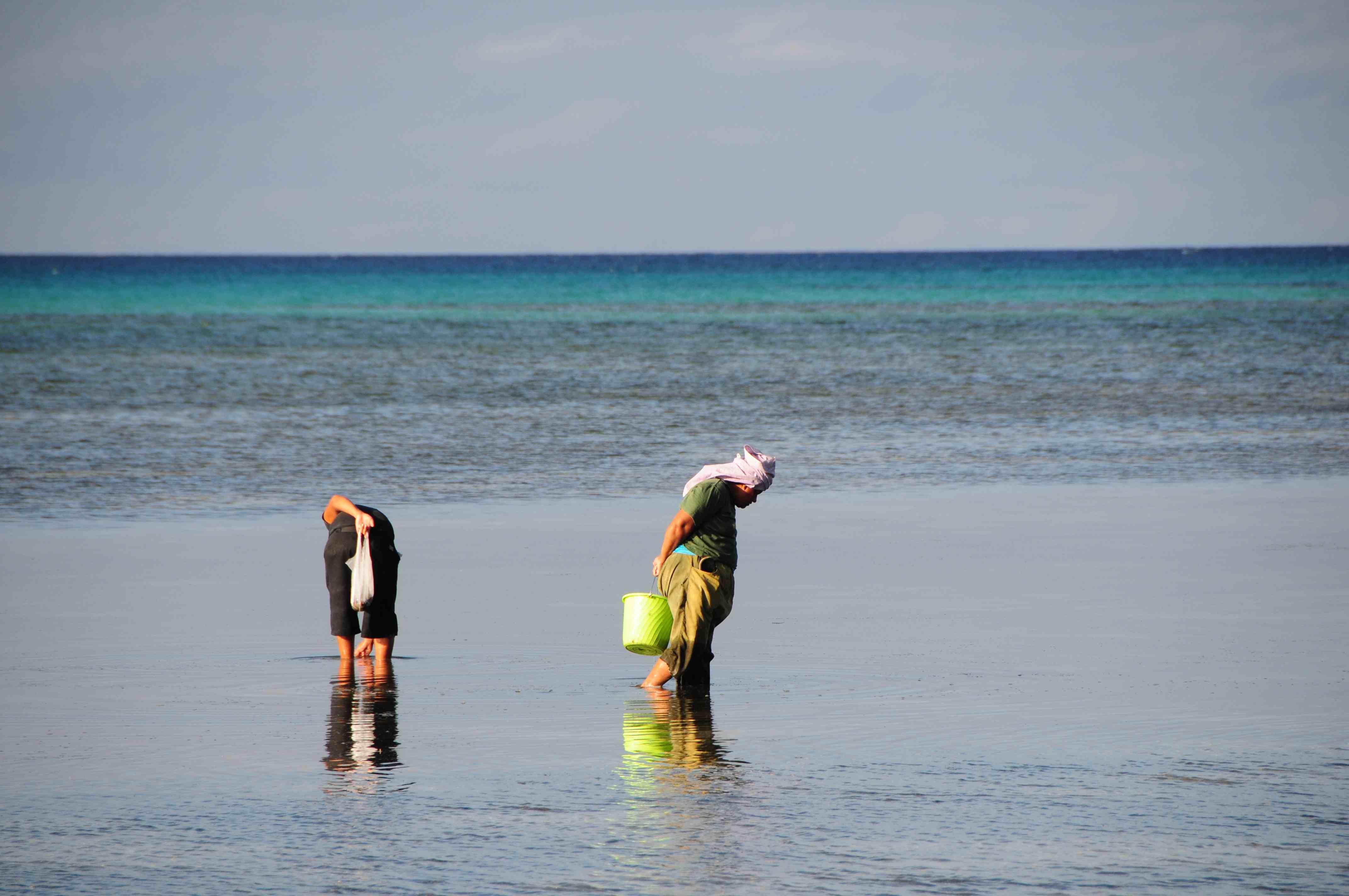 Solomon islands for Solomons island fishing report
